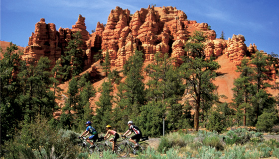 Bryce & Zion Biking Tour